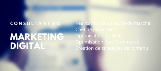 CONSULTANT EN MARKETING DIGITAL