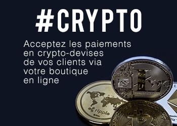 Accepter les paiements en cryptos sur votre boutique en ligne